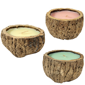 "Brazil Nut Candles with Healing Scents Crafted in Peru  Measures: ~ 2-1/4 to 2-3/4"" high and 4"" to 4-1/2"" in diameter   clockwise from left: lemon, cinnamon and eucalyptus"